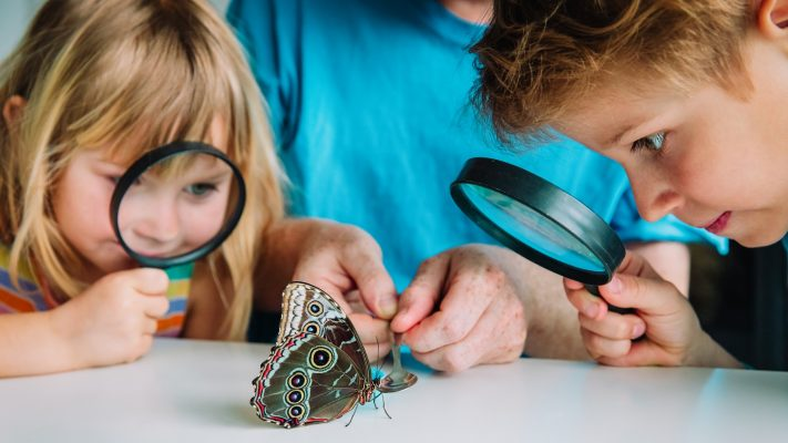 11 Science Resources and Activities For Parents, Teachers and Pupils