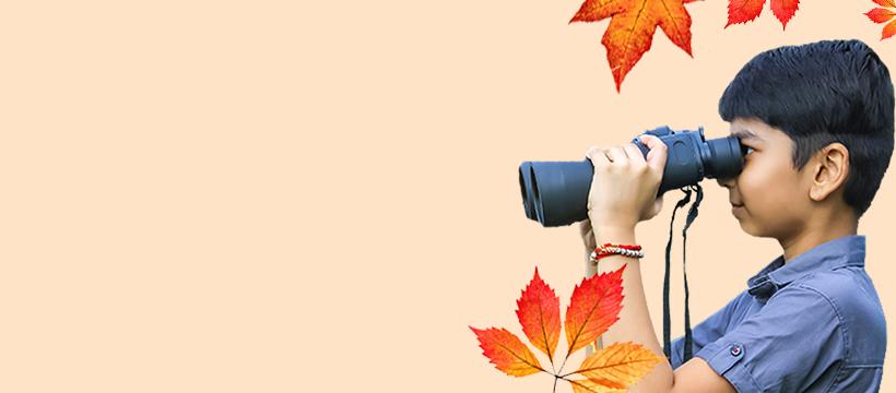 Autumn Banner Website